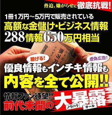 E-BOOK白書ネットビジネス編.jpg